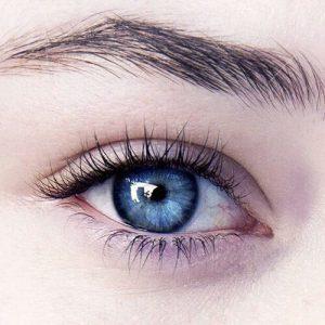 外国人の瞳